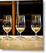 Tasting Wine Metal Print by Elena Elisseeva