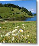 Tau Mare Lake Metal Print