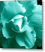 Teal Green Begonia Floral Metal Print by Jennie Marie Schell