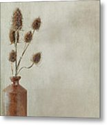 Teasels In Stone Jar Metal Print
