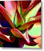 Technicolored Agave Succulent Metal Print