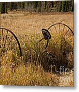 Tedder On The Holzwarth Historic Site Metal Print