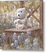 Teddy Bear And Texas Bluebonnets Metal Print