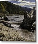 Teddy Bear Cove Metal Print