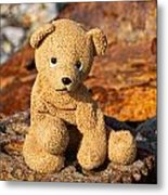 Ted's On The Rust Pile 2 Metal Print