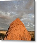 Termite Mound, Exmouth, Australia. Metal Print by Science Photo Library