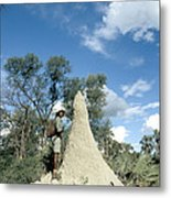 Termite Mound Metal Print by Mark Newman