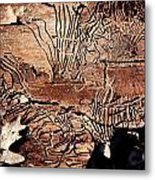 Termite Trails Metal Print by Kevin Grant