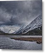 Tern Lake Metal Print