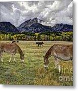 Teton Pastorale Metal Print