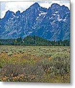 Teton Peaks And Flatland Near Jenny Lake In Grand Teton National Park-wyoming Metal Print
