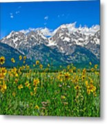 Teton Peaks And Flowers Metal Print