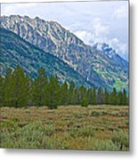 Tetons Above The Meadow In Grand Teton National Park-wyoming Metal Print