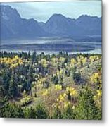 1m9209-tetons From Signal Mountain, Wy Metal Print