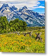 Tetons In The Spring Metal Print