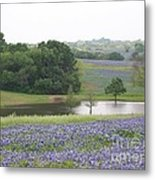 Texas Bluebonnets And Lake Metal Print by Ellen Howell