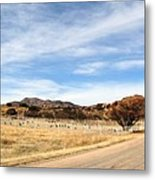 Texas Canyon In February Metal Print
