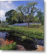 Texas Hill Country - Fs000056 Metal Print