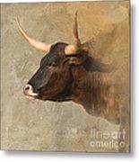 Texas Longhorn # 3 Metal Print