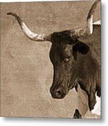 Texas Longhorn #6 Metal Print