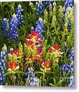Texas Spring Metal Print