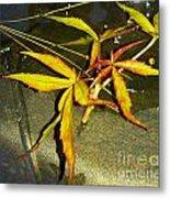 Texas Star Leaf Metal Print