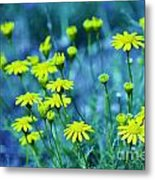 Texas Wildflowers V4 Metal Print