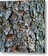 Textural Turquoise Rust Gray  Metal Print