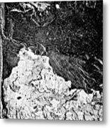 Texture No.2 B W Metal Print