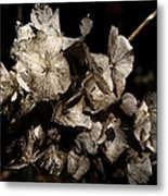 Texture Of Ageing Metal Print