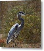 Textured Blue Heron Metal Print