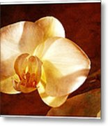 Textured Orchid Metal Print