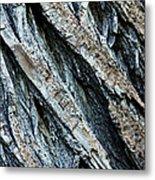 Textured Tree Bark Metal Print