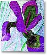 Textured Wild Purple Iris Metal Print
