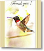 Thank You Card - Bird - Hummingbird Metal Print