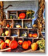 Thanksgiving Pumpkin Display No. 1 Metal Print