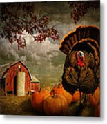 Thanksgiving Turkey Among Pumkins Metal Print