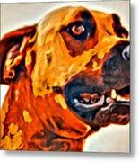 That Doggone Face Metal Print