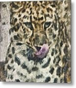 That Was Delicious Metal Print by Trish Tritz
