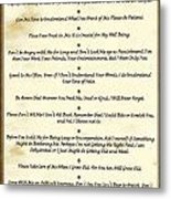 The 10 Commandments  For Pets  Antique Marble Metal Print