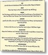 The 10 Commandments For Pets On Old Parchment Metal Print