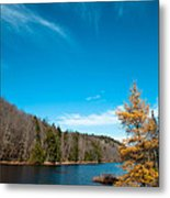 The Alpine Larch Tree On Bald Mountain Pond Metal Print