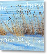 The Answer Is Blowing In The Wind Metal Print