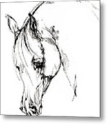 The Arabian Horse Sketch Metal Print