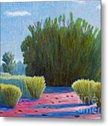 The Arroyo Metal Print