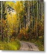 The Autumn Road Metal Print