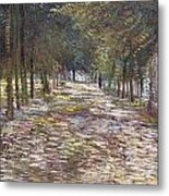 The Avenue At The Park Metal Print