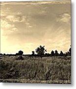 The Back Pasture Metal Print