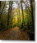 The Back Roads Of Autumn Metal Print