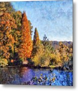 The Bald Cypress Metal Print